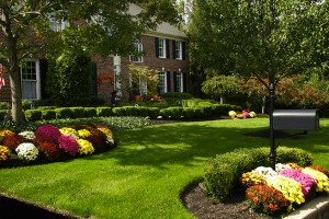 The Foundation to Landscaping Design: The Site Analysis